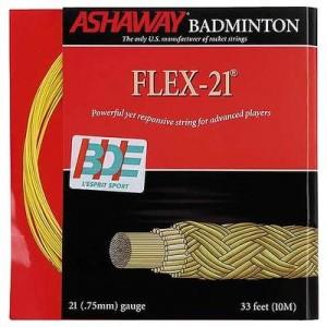 cordage ashaway flex 21